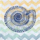 Sea Creatures - Shell I Art Print
