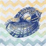 Sea Creatures -Shell II Art Print