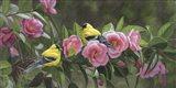 Garden Gems Art Print