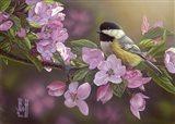 Pretty in Pink - Chickadee Art Print