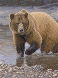 Shore Patrol - Grizzly Art Print