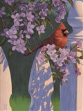 Crimson Evening Art Print