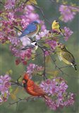 Birds and Blossoms Art Print