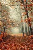 Autumn Rust Art Print