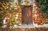 Autumn Wooden Doorway in Prague Art Print