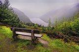 Bench Over the Upper Lake in Glendalough Ireland Art Print