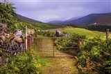 Gates on the Road at Wicklow Hills Ireland Art Print