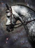 The Horse Among the Stars Art Print