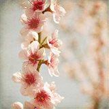 Spring Whispers 4 Art Print