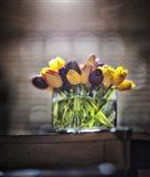 Cut Tulips On Edge Of Table Art Print