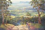 Vineyard Vista Art Print