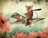 Catching A Ride On A Hummingbird's Back Art Print
