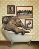 Elephant In Tub Art Print
