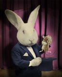 Rabbit Magician Art Print