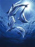 Dolphin Swing Art Print
