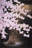 Falling Cherry Blossoms Art Print