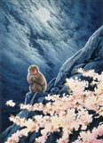 Spring - Cherry Blossoms Art Print