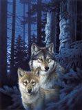 Mystic Canyon Art Print