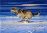 Snow Beat Art Print