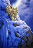 Snowy Cliff Art Print