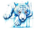 Blue Tears Art Print