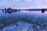 Mono Lake Dawn Art Print