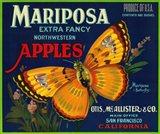 Mariposa Apples Butterfly Ad Art Print