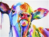 Do These Colours Make My Calves Look Fat Art Print