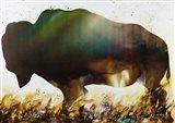 Roaming the Plains Art Print