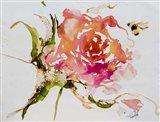 Buzy Pollinating Art Print