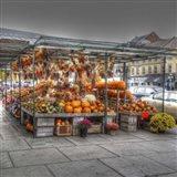 Byward Market Pumpkins Art Print