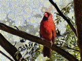 Cardinal Knowledge Art Print