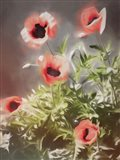 Poppy Fresh Art Print