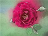 Luscious Red Rose Art Print