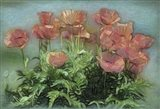 Peachy Poppies In The Garden Art Print