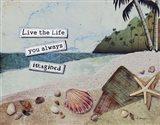 Imaginary Life Art Print