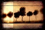 For the Love of Trees I Art Print