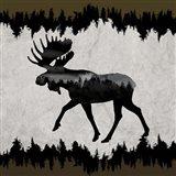 Rustic Lodge Collection V1 1 Art Print