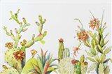 Cactus Clan Art Print