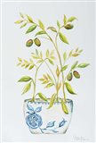 Extend an Olive Branch Art Print