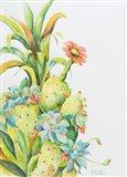 Fruits of the Desert Art Print