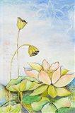 Rising Lotus Art Print