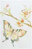 Wings of Blue 2 Art Print