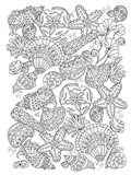 Nautical Shells Art Print