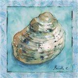 Shell 4 Art Print