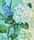 White Hortensia Art Print