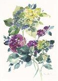 Flower Series 23 Art Print