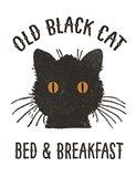 Old Black Cat Art Print