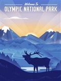 Olympic National Park Art Print