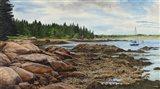 Spruce Head Penninsula (ME) Art Print